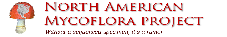 north american mycoflora project